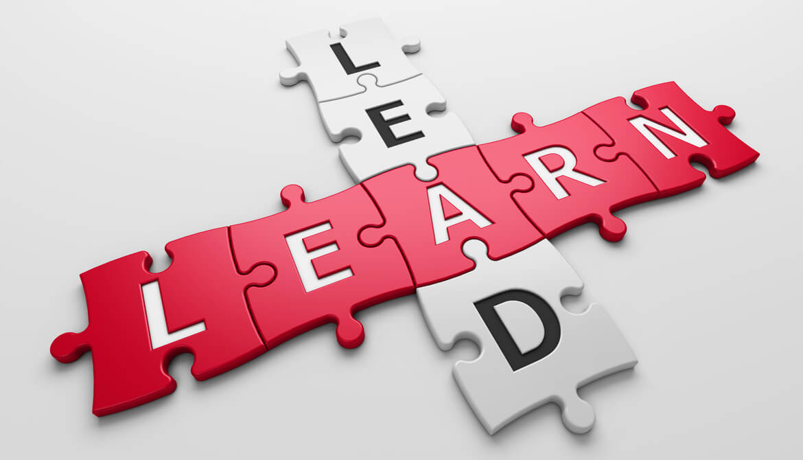 puzzle pieces spelling out lead and learn