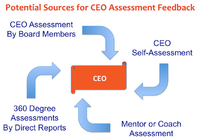 CEO Assessment Tool