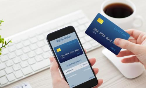 person holds credit card and mobile phone with mobile wallet open