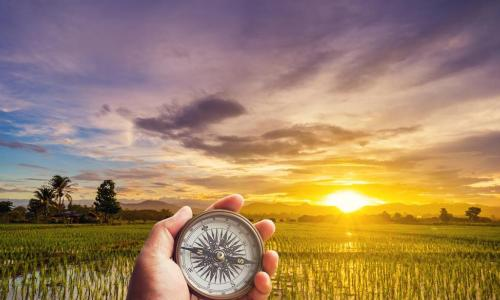 hand holding compass in a field with sunset in the background