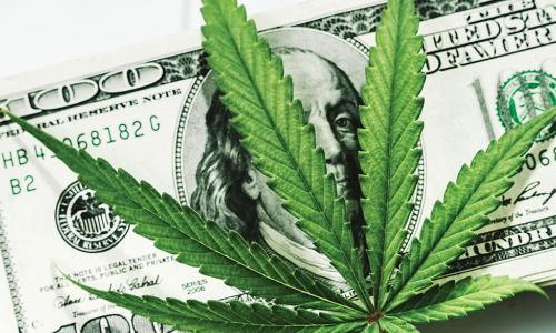 Marijuana leaf laying on top of a $100 bill