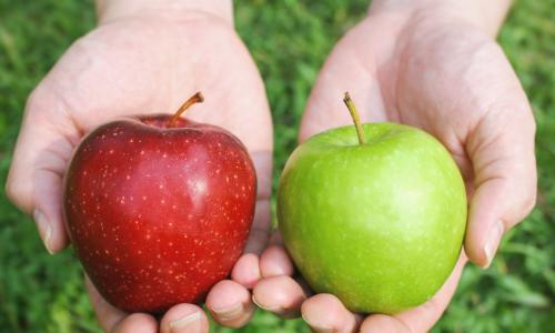 comparing red apple to green apple