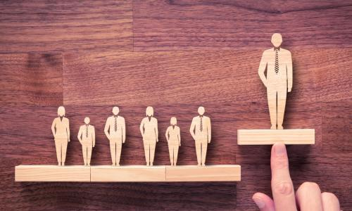 line of wooden board members elevating one