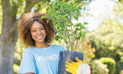 smiling African American woman wearing a volunteer t-shirt and holding a sapling ready to plant
