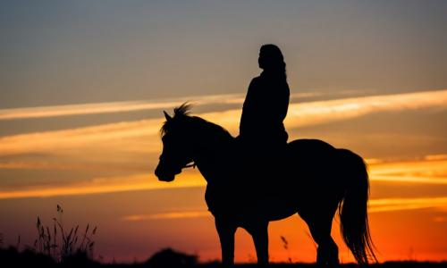 silhouette of woman riding horse slowly at sunset